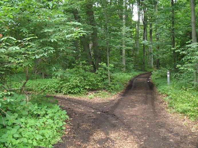 Beaver Lake Nature Center, Baldwinsville, N.Y.