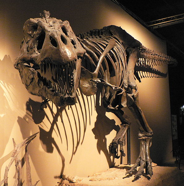 The T-rex in museums are scary enough.
