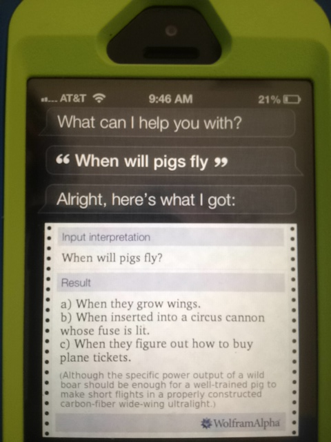 "Siri answers my question on ""When will pigs fly?"""