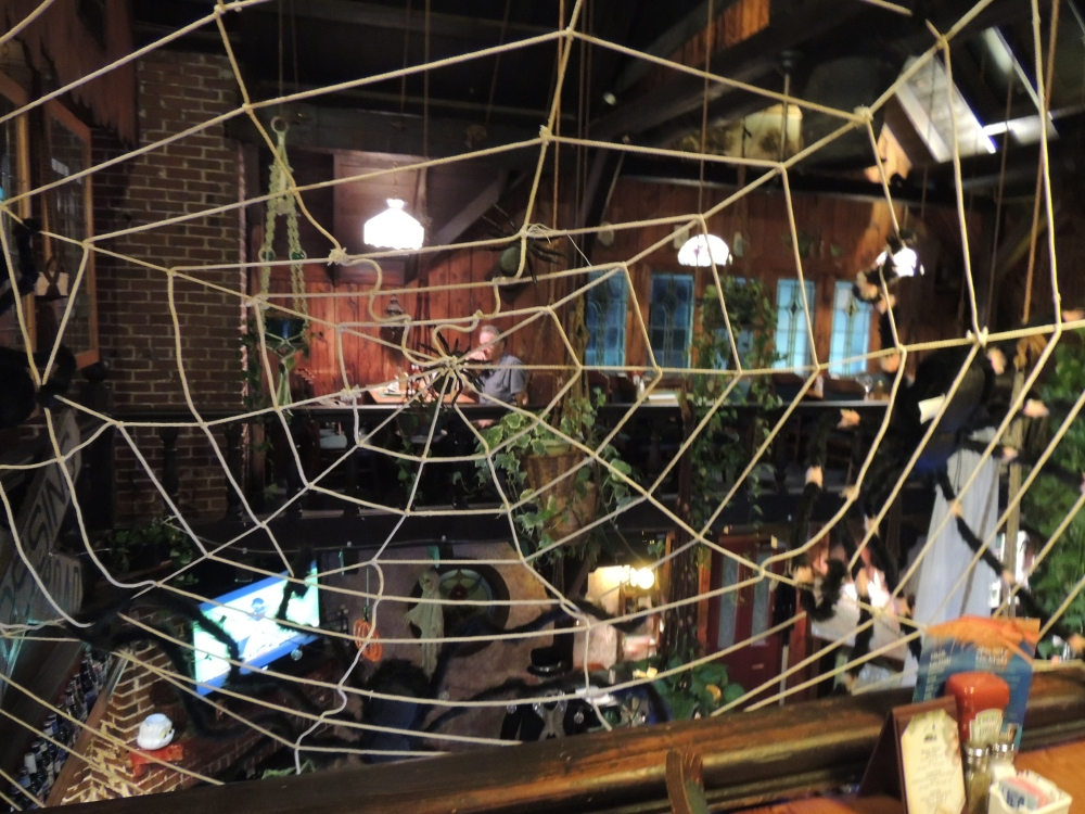 caught in a spider web - Halloween decorations at Ashley's