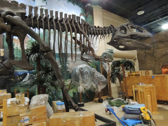 Dinosaur store and museum - Cocoa Beach - Nov. 15. 2014 007
