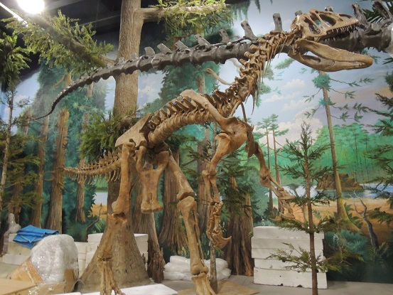 Dinosaur store and museum - Cocoa Beach - Nov. 15. 2014 018
