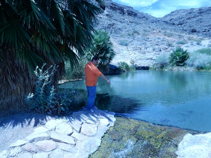 Desert Springs - A welcome attraction in the dry desert, but do not drink the water or swim in it.