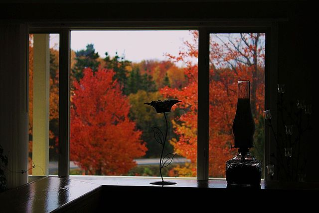 Autumn - Indian Summer - from a Canadian window