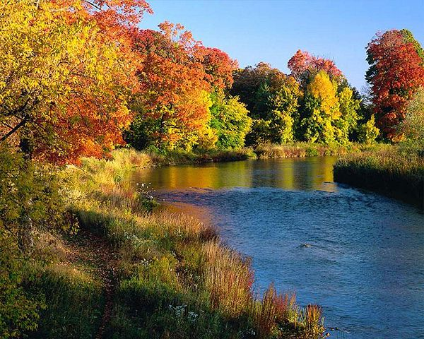 Autumn - Indian Summer