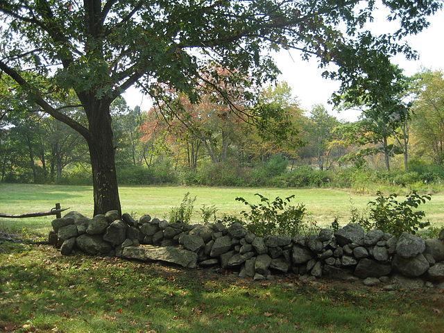 Wall - Carlisle stone wall - Massachusetts - 2007